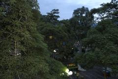 Jardin-Colombia-2-in-kerstverlichting8-12-13.-RG