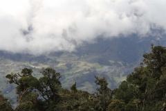 Landschap-en-natuur-3
