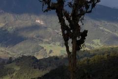 landschap-en-natuur-7