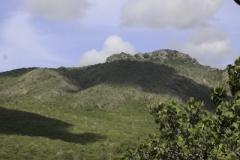 Landhuis Knip uitzicht
